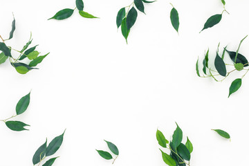 Green leaves on white background, flat lay, top view