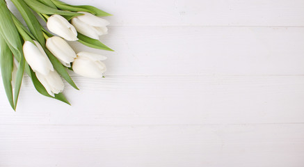 Fototapeta Bouquet of white tulips on a white wooden table, copy space. Easter. obraz