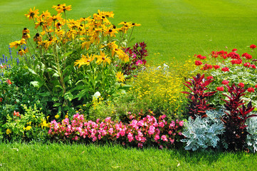 Summer flower bed and green lawn.