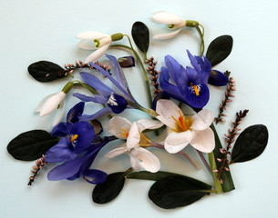 Spring Composition: Bunch of flowers in spring, iris, snowdrop, crocus