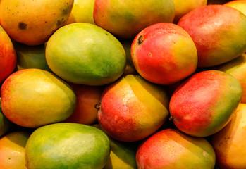 lot of red fresh mango fruits