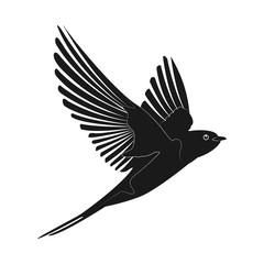 swallow icon vector illustration. silhouette bird
