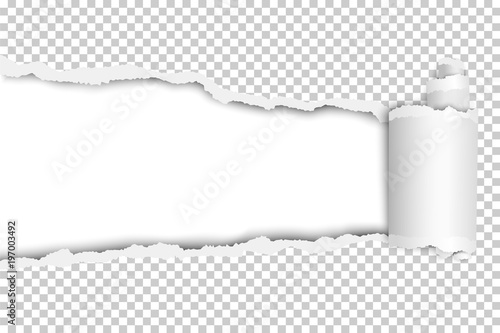 Vector torn long hole in transparent sheet with wrapped paper curl ...