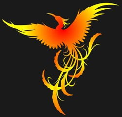 fiery phoenix on a dark background