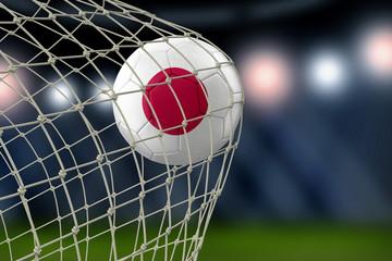 Japanese soccerball in net