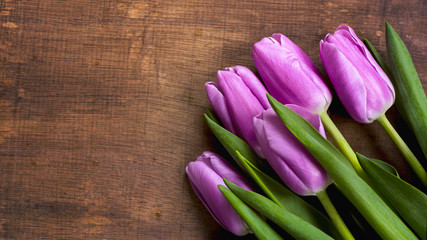 close-up bunch of purple tulips background bouquet of lilac tulips