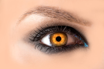 Mystic amber eye, witch witchcraft concept, fairy-tale look, fairy or young woman with beautiful make-up and yellow colored lenses for eyes. Cosmetics for make-up eyes. Open eye, Halloween