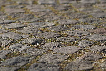 Stone pavement closeup with joints, split and a little bit of grass 3