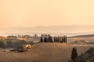Wall Mural - Summer landscape at sunrise in Tuscany, Italy
