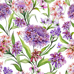 Beautiful iberis flowers with green leaves on white background. Seamless floral pattern. Watercolor painting. Hand painted illustration.