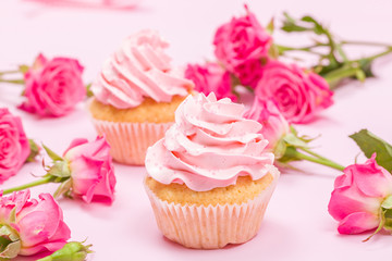 Cupcake with pink cream decoration and roses on pink pastel background.