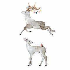 Watercolor deer vector set