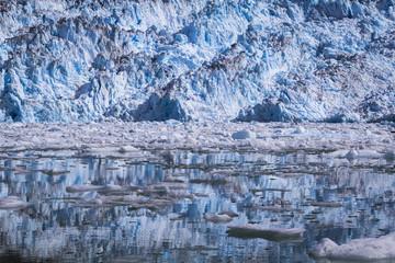 View of South Sawyer Glacier