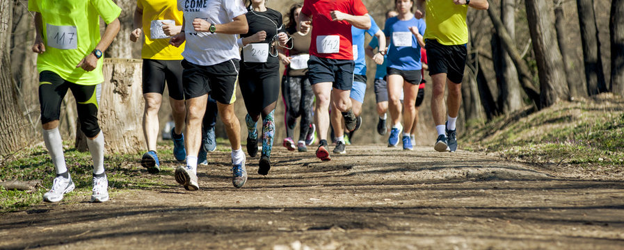 Marathon race  at spring