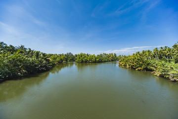 Lagoon at Negombo, Sri Lanka