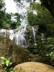 Argyle Waterfall, Scarborough - Tobago