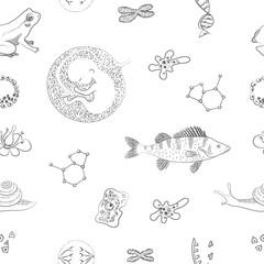 Biology. Flower, DNA, cell, chromosomes, perch fish, molecule, amoeba, human embrio. Vector sketch pattern.