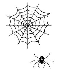Kreuzspinne als Spinne im Spinnennetz