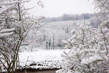 snow ladscape in switzerland