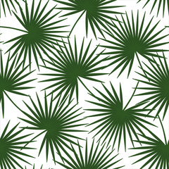 green palm leaves on a white background livistona rotundifolia palm tree natural exotic tropical hawaii seamless pattern vector