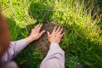 Hand on an anthill