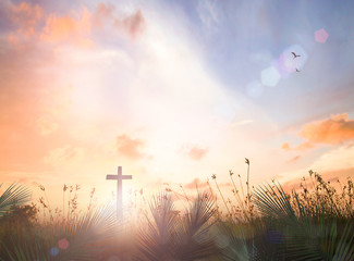 Easter Sunday concept: Silhouette cross with palm leaves over meadow sunset background