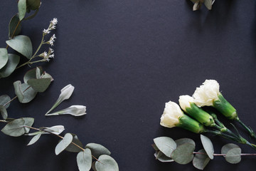 eucalyptus and white flowers on a gray background