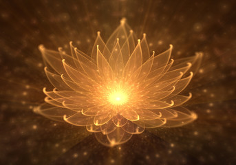 Water Lily, Radiant Orange Lotus with Rays of Light
