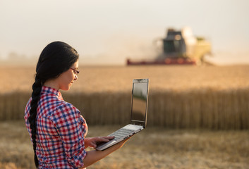 Farmer woman at harvest