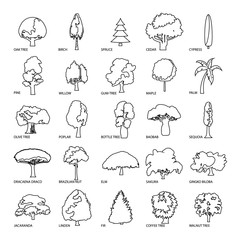 Tree types icons set, outline style