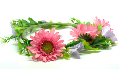 crown Flower White background