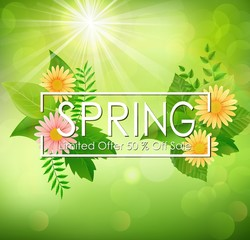Spring sale background banner with beautiful colorful flower and green leaves