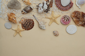 Summer and Vacation concept. Mix of Shells and Stones over Ivory Background with Copy space for Text. Top View.