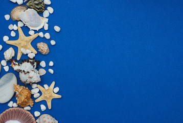 Starfish with Shells and stones Against a Blue Background with Copy Space. Summer Holliday. Nautical, Marrine concept.