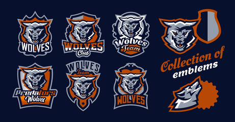 A set of colorful emblems, logos, snarling wolf. An aggressive predator, an animal from the forest, a dangerous beast, a head, a mascot. Sport Identity, T-shirt printing, vector illustration.