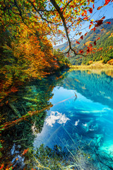 Fantastic autumn landscape. Amazing lake with azure water