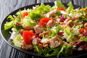 Healthy and delicious food: salad of tuna fish, borlotti beans, tomatoes, mix of lettuce close-up. horizontal