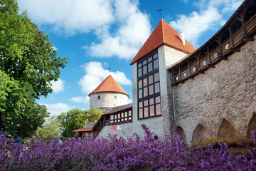 Wall Mural - View to old Tallinn in middle summer. Wall with towers at Toompea