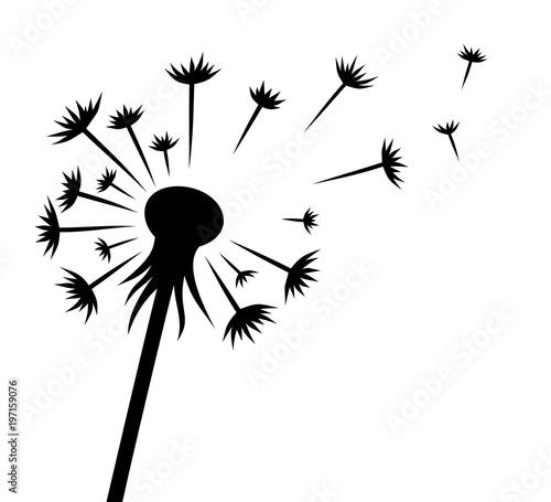 the dandelion flower stock image and royalty free vector files on rh fotolia com dandelion vector art dandelion vector png