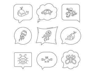 Octopus, turtle and dolphin icons. Jellyfish.