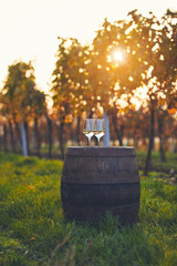 Two glasses of white wine on old barrel, toned image