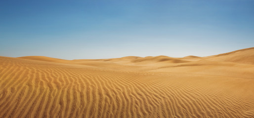 Tuinposter Zandwoestijn Dunes at empty desert, panoramic nature background with copy space