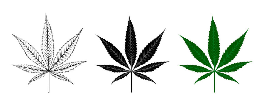 Black and Green Cannabis Leaf . Logo Design