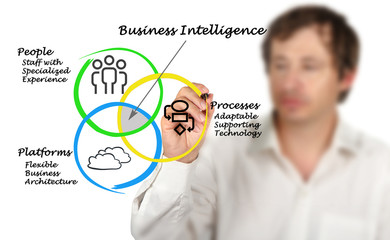 Wall Mural - diagram of Business Intelligence