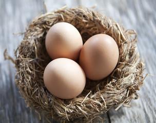 nid d œufs frais