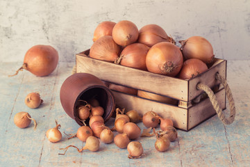 Onion, small in a clay pot and large in a wooden box on an old table. Toned photo.