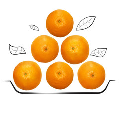 Fruit composition with fresh grapefruit and cartoon cute doodle drawing plate with leaves on white background. Creative minimalistic food concept.