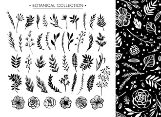 Botanical collection with floral pattern. Flowers, branches, and leaves. Hand drawn design elements. Nature vector illustration.