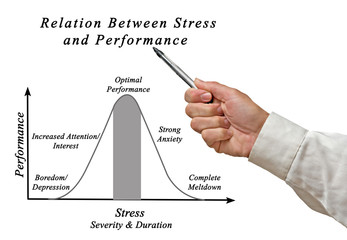 Relation Between Stress and Performance