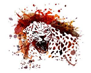 Vector color illustration of leopard
